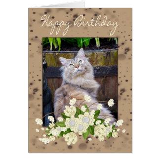 Happy Birthday, Birthday Card With Cat, Cat Birthd