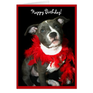 Happy Birthday Blue Pitbull Puppy greeting card