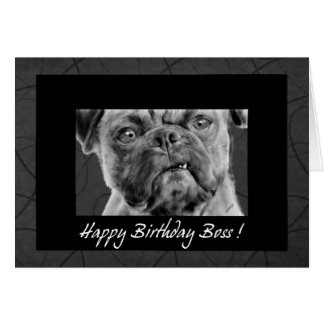 Happy Birthday Boss Funny Pug Dog Card for Office