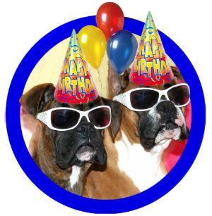 Happy Birthday Boxers Dog Shirt