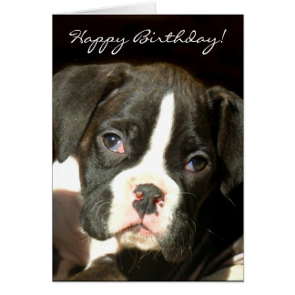Happy Birthday Brindle boxer puppy greeting card