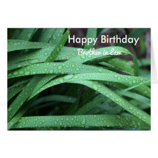 Happy birthday brother in law card