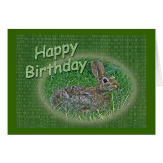 Happy Birthday Bunny Rabbit Cordinating Items Card