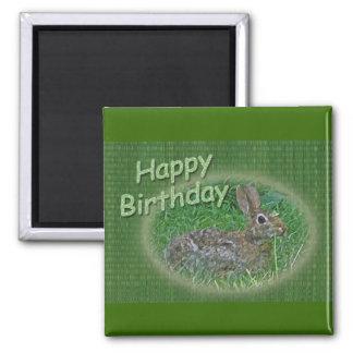 Happy Birthday Bunny Rabbit Cordinating Items Refrigerator Magnets