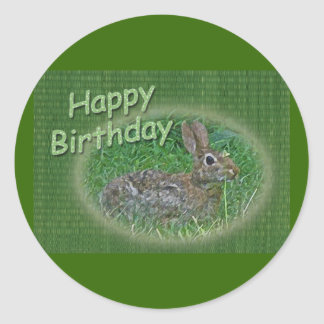 Happy Birthday Bunny Rabbit Cordinating Items Round Sticker