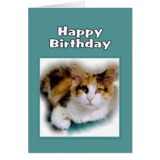 Happy Birthday Calico Cat Card