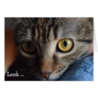 Happy Birthday Card: Cat's Face Card