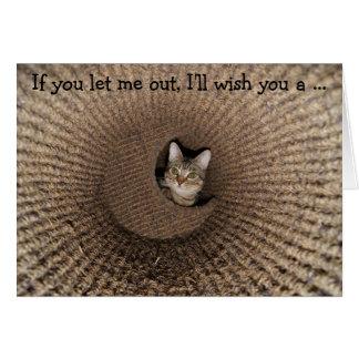 Happy Birthday Card: Kitten in a Basket Card