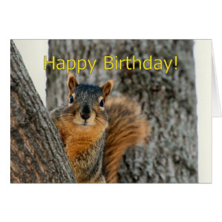 Happy Birthday Card With A Squirrel
