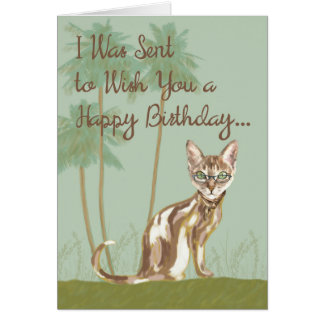 Happy Birthday Card with Cat, Humourous