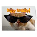 Happy Birthday - Cat Wearing Sunglasses