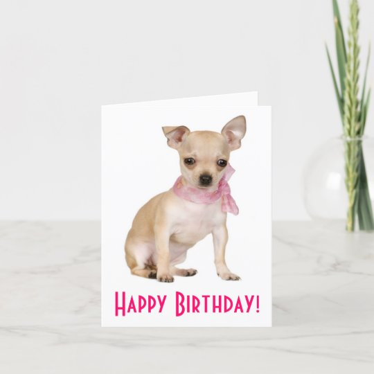 CHIHUAHUA DOG GREETING NOTE PARTY INVITE THANK YOU BIRTHDAY ANNIVERSARY CARDS
