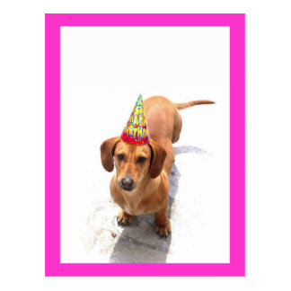Happy Birthday Dachshund Postcard