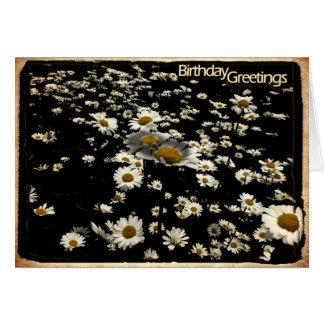 Happy Birthday, Daisies Card