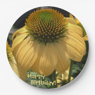 Happy Birthday Echinacea Paper Plate