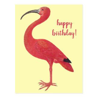 Happy Birthday Flamingo   Fine Art Yellow Postcard
