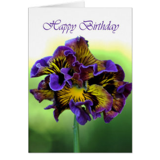 Happy Birthday - Frilly Pansy Flower Card