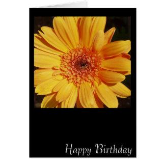 Happy Birthday Gerbera Card