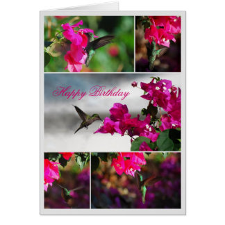 Happy Birthday Green-throated Carib Hummingbird Card