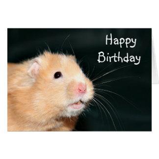 Happy Birthday hamster Card