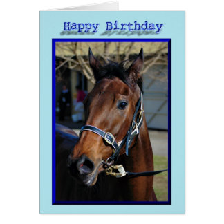 Happy Birthday Horse Birthday mare stallion foal Card