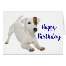 Jack russell terrier birthday cards invitations zazzle happy birthday jack russell terrier puppy dog card bookmarktalkfo Image collections