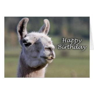 Happy Birthday llama | llama happy birthday Card
