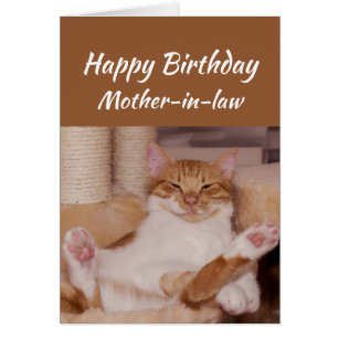 Mother in law birthday cards invitations zazzle happy birthday mother in law celebrate funny cat card m4hsunfo