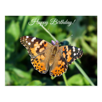 Happy Birthday Painted Lady Butterfly Postcard