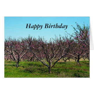 Happy Birthday Peach Orchard in Full Bloom Card