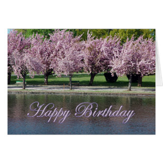 Happy Birthday Pink Cherry Blossoms Reflecting Card