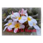 Happy Birthday Plumeria, Hawaiian Card