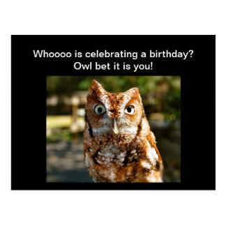 Happy Birthday Postcard Eastern Screech Owl