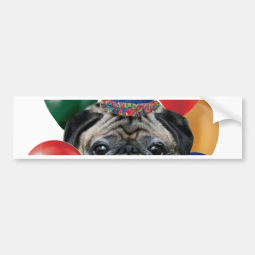 Happy birthday Pug dog Bumper Sticker