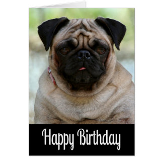 Happy Birthday Pug Puppy Dog Black Greeting Card