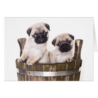 Happy Birthday Pug Puppy Dog Greeting Card - Verse