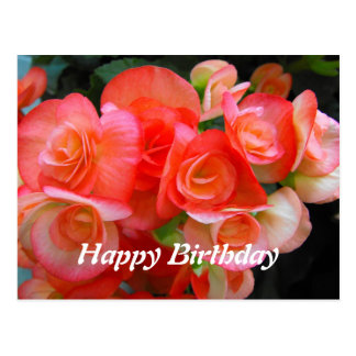 happy birthday red begonia flowers postcard