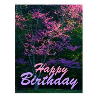 Happy Birthday - Redbud Flower Tree Postcard