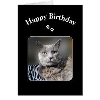 Happy Birthday Russian Blue Cat Greeting Card