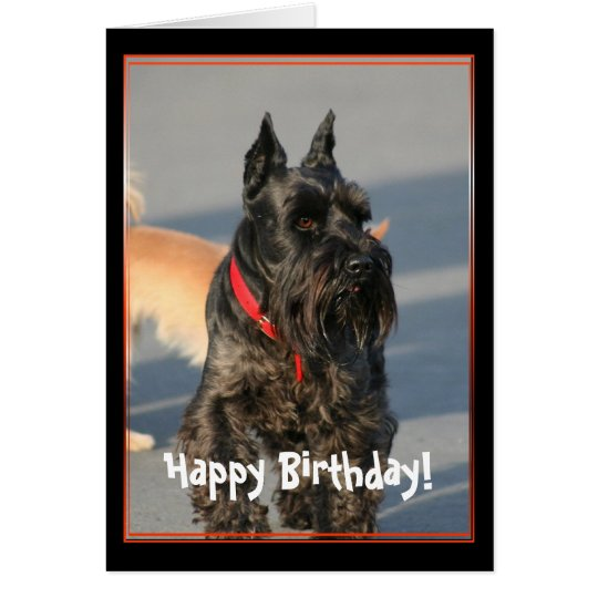 Happy Birthday Scottish Terrier Greeting Card
