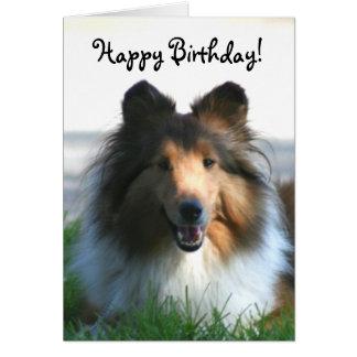 Happy Birthday Shetland Sheepdog greeting card