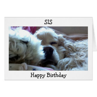 HAPPY BIRTHDAY SIS-TAKE NAP/DO WHATEVER U WISH CARD