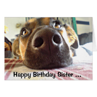 Happy Birthday Sister I NOSE it's your Cute Dog Card