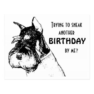 Happy birthday sneaking by postcard
