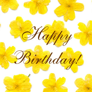 Happy Birthday Yellow Flowers Stickers Zazzle Au