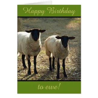 Happy Birthday to Ewe From the Flock! Customisable Card