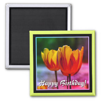 Happy Birthday! Tulips yellow red Magnet