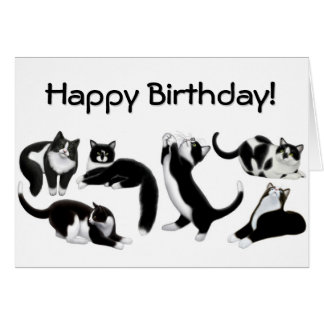 Happy Birthday Tuxedo Cats Card