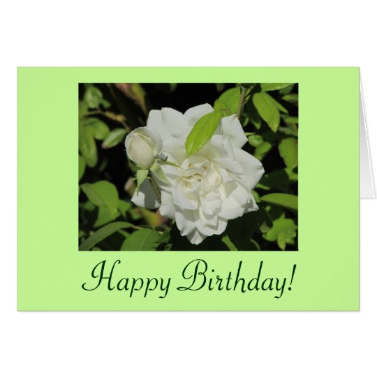 Happy Birthday White Rose Card