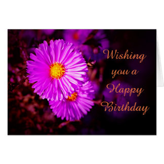 Happy Birthday with pink asters Card